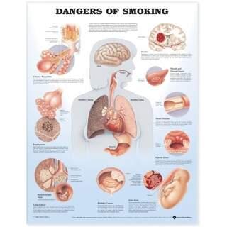 Schaden beim Rauchen laminiertes Poster