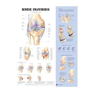 Knieverletzung Poster Englisch