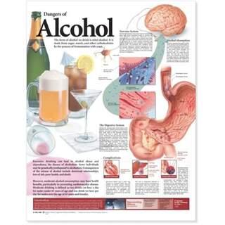 Laminiertes Poster zu den schädlichen Auswirkungen von Alkohol in englischer Sprache