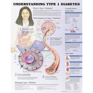Typ 1 Diabetes - Poster / Pläne