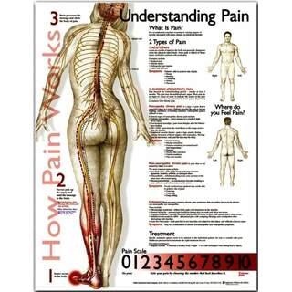 Schmerz verstehen - Plakat