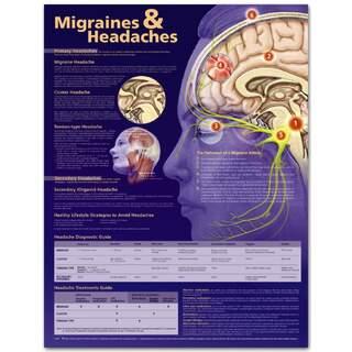 Migrän & Hovepine Englisch Laminered plansch och huvudvärk