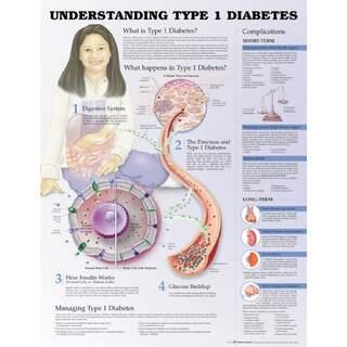 Typ 1 Diabetes - Poster / Pläne